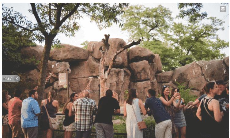 Oktobearfest - Philadelphia Zoo