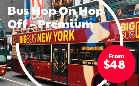 Bus Hop On Hop Off – Premium