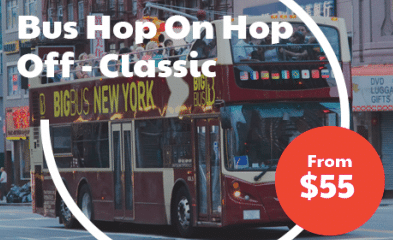 Bus Hop On Hop Off - Classic