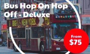 Bus Hop On Hop Off - Deluxe