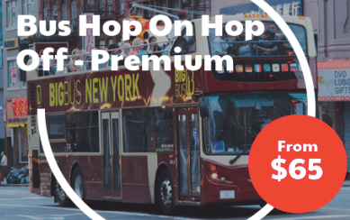 Bus Hop On Hop Off - Premium